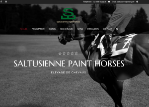 Saltusienne Paint Horses<br />Site Internet<br><b>More info</b>